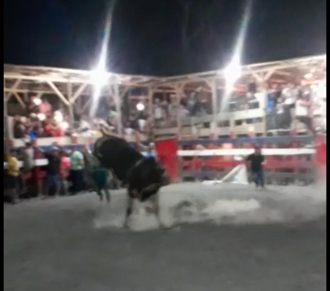 Photo of Chepito de Aguabuena se encuentra hospitalizado al ser golpeado por toro