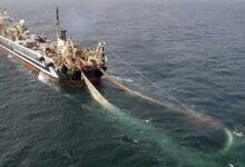 Photo of 28 diputados aprueban proyecto que revive la pesca de arrastre en el país